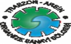 Trabzon Arsin Organize Sanayi Bölgesi