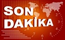 Miroğlu Orman Ürünleri Ltd. Şti.