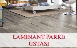 Ankara Parke