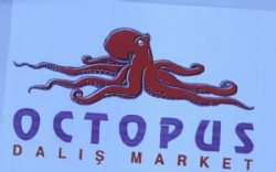 Octopus Dalış Market