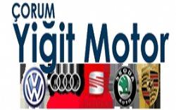 Yiğit Motor Volkswagen Audi Skoda Seat Porsche Özel Servis Ç